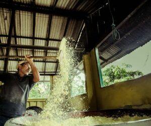 peixe frito empanado na farinha d'água - documentário