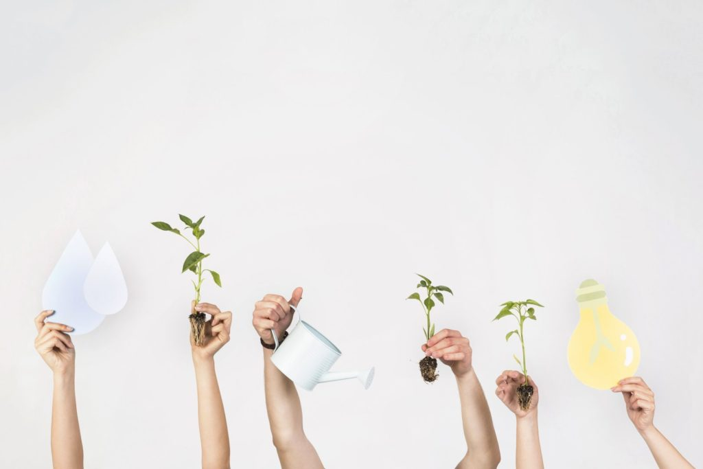 Ser sustentável a partir de hoje é possível (e é uma necessidade)!